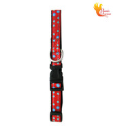 Phoenix Overseas Polka Dotted Puppy Small Dog Collar- Red